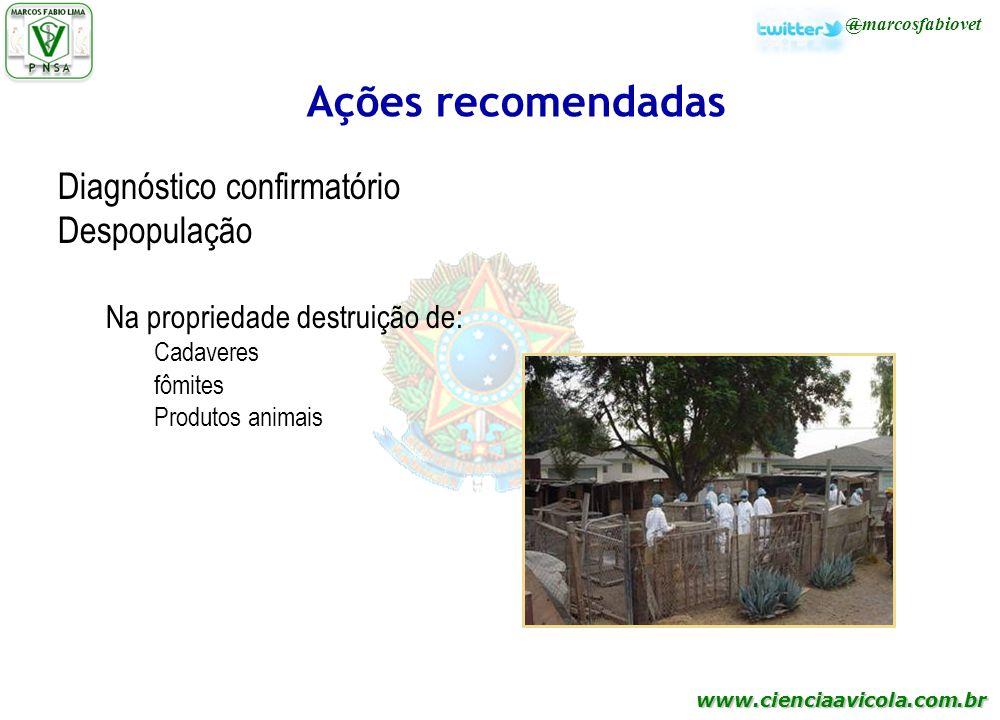 Ações recomendadas Diagnóstico confirmatório Despopulação