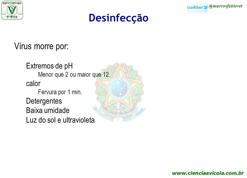 Desinfecção Vírus morre por: Extremos de pH calor Detergentes