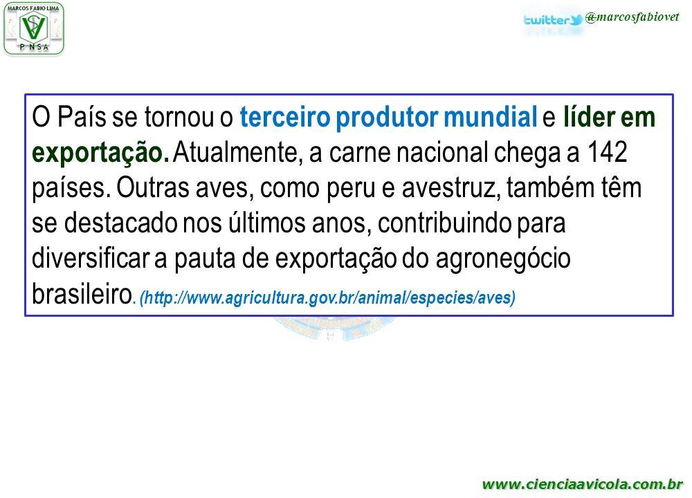 O País se tornou o terceiro produtor mundial e líder em exportação