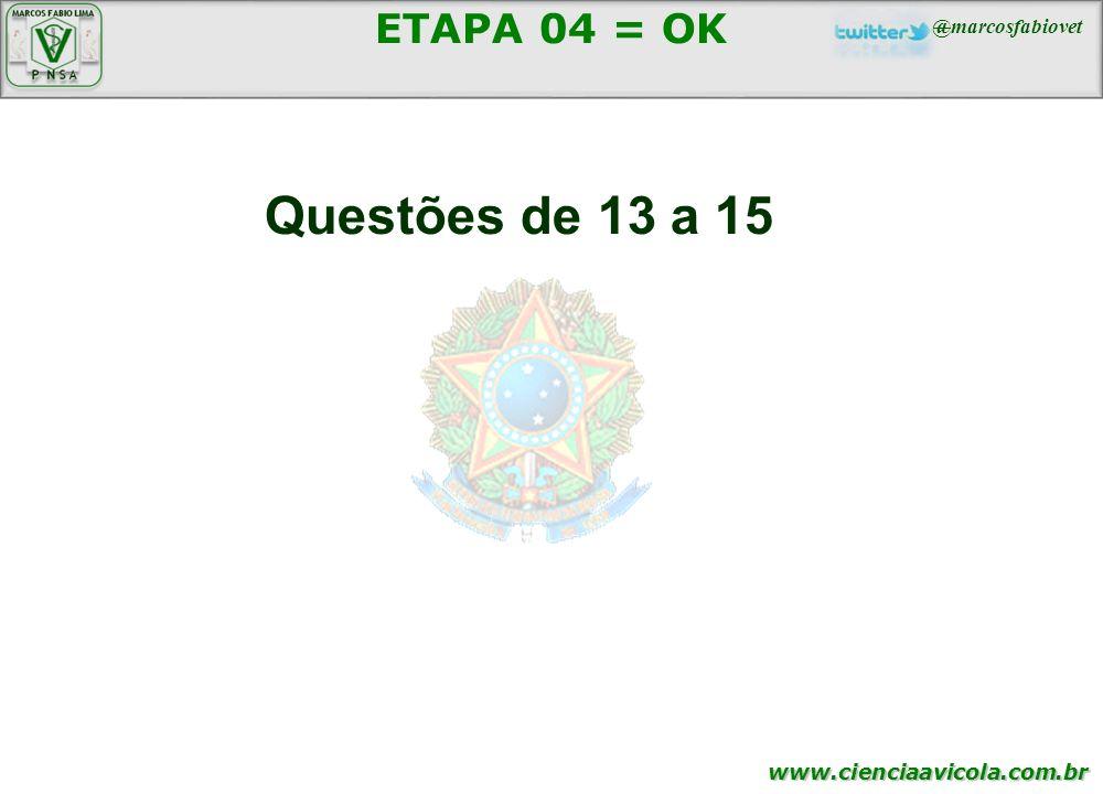 ETAPA 04 = OK Questões de 13 a 15 95