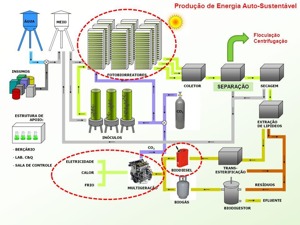 Produção de Energia Auto-Sustentável