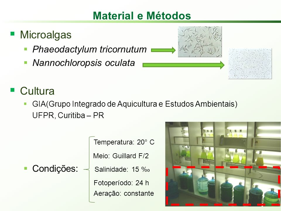 Material e Métodos Microalgas Cultura Phaeodactylum tricornutum