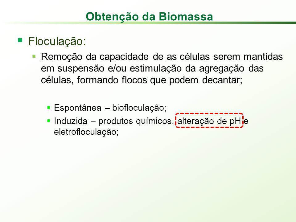 Obtenção da Biomassa Floculação: