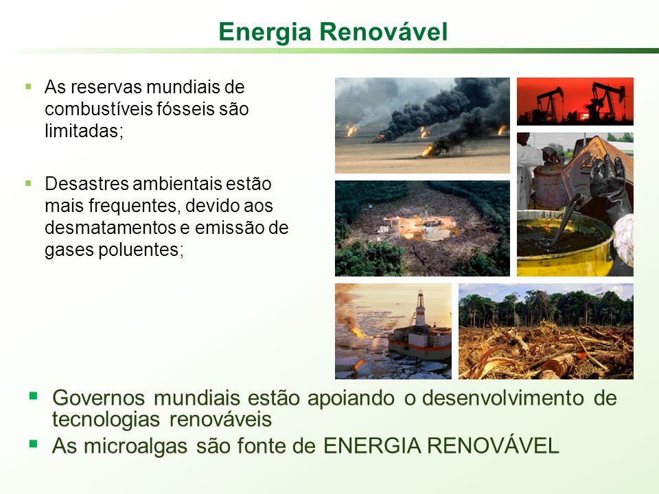 Energia Renovável As reservas mundiais de combustíveis fósseis são limitadas;
