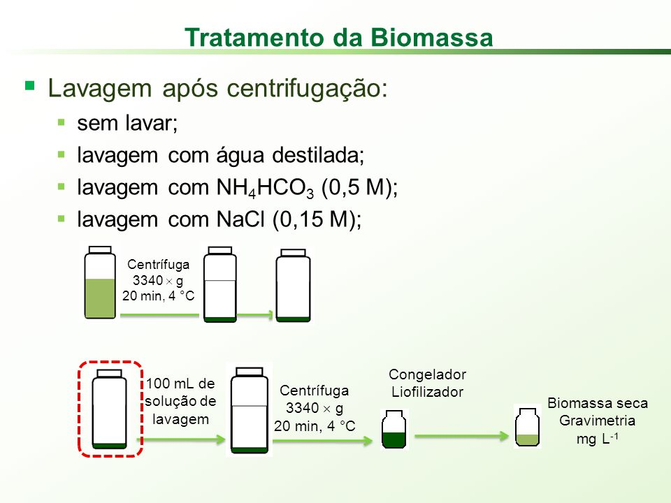 Tratamento da Biomassa