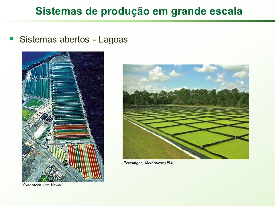 Sistemas de produção em grande escala