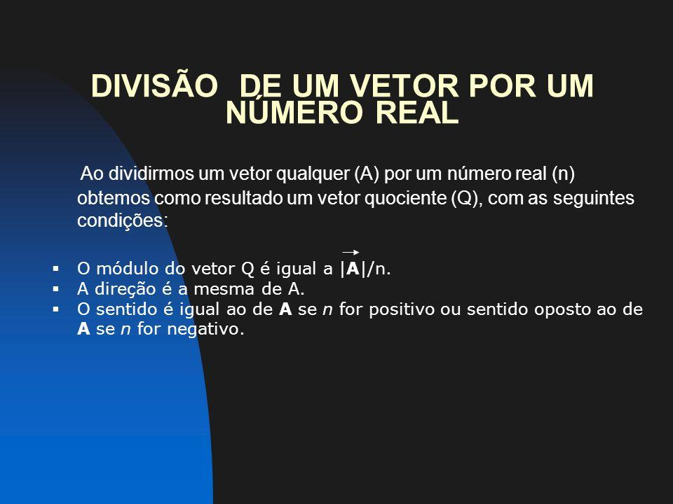 DIVISÃO DE UM VETOR POR UM NÚMERO REAL