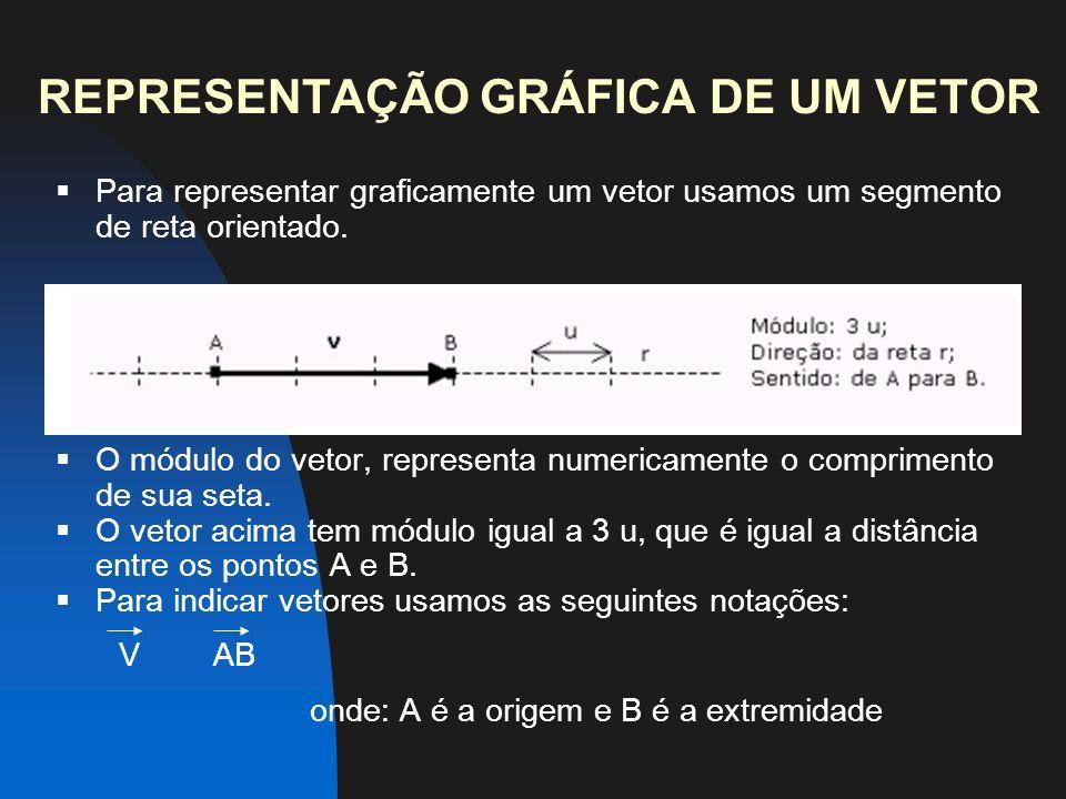 REPRESENTAÇÃO GRÁFICA DE UM VETOR