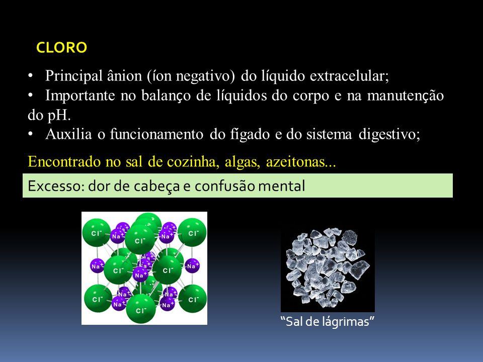 Principal ânion (íon negativo) do líquido extracelular;