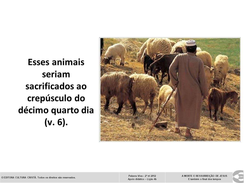 Esses animais seriam sacrificados ao crepúsculo do décimo quarto dia (v. 6).