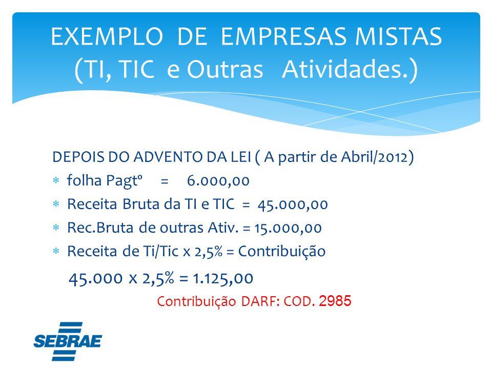 EXEMPLO DE EMPRESAS MISTAS (TI, TIC e Outras Atividades.)