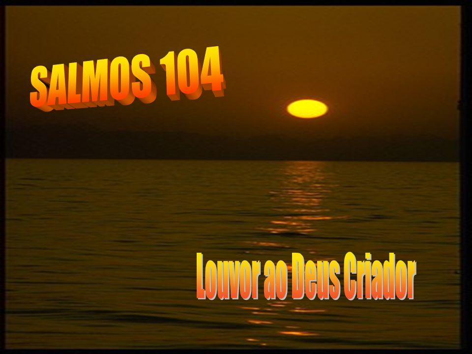 SALMOS 104 Louvor ao Deus Criador