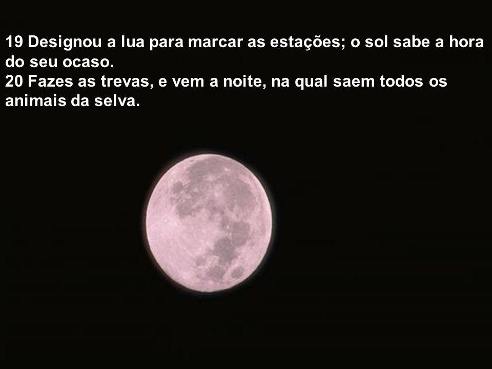 19 Designou a lua para marcar as estações; o sol sabe a hora do seu ocaso.