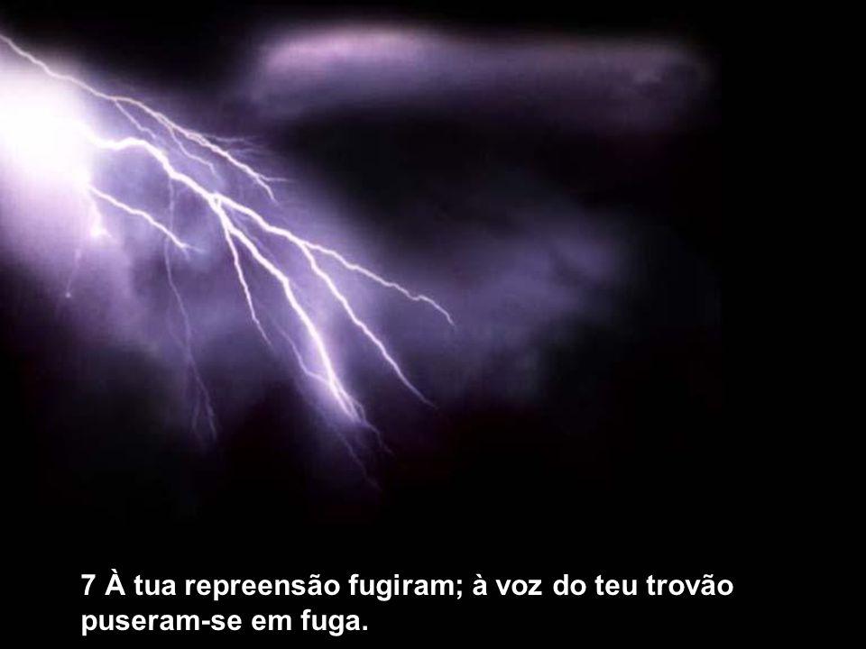 7 À tua repreensão fugiram; à voz do teu trovão puseram-se em fuga.
