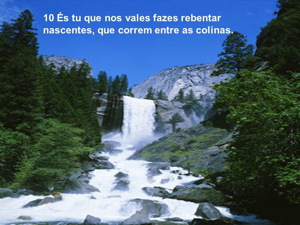10 És tu que nos vales fazes rebentar nascentes, que correm entre as colinas.