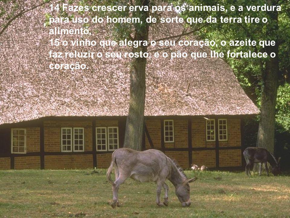 14 Fazes crescer erva para os animais, e a verdura para uso do homem, de sorte que da terra tire o alimento,