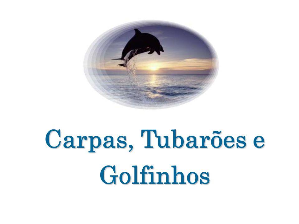 Carpas, Tubarões e Golfinhos