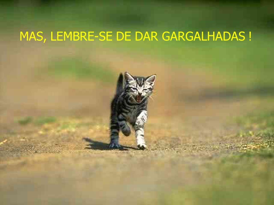 MAS, LEMBRE-SE DE DAR GARGALHADAS !
