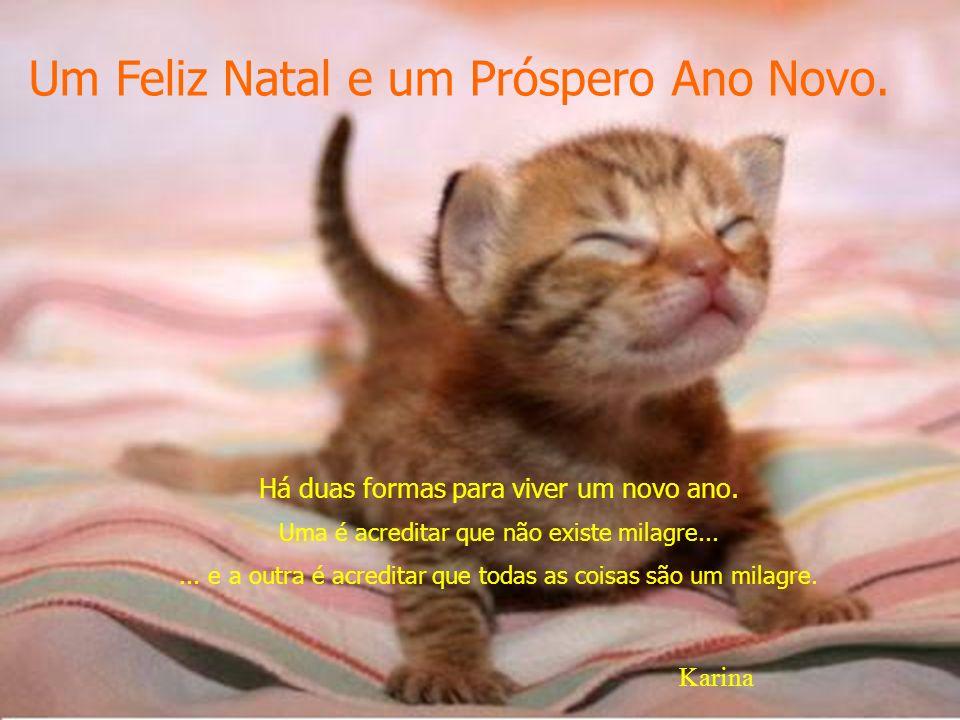 Um Feliz Natal e um Próspero Ano Novo.