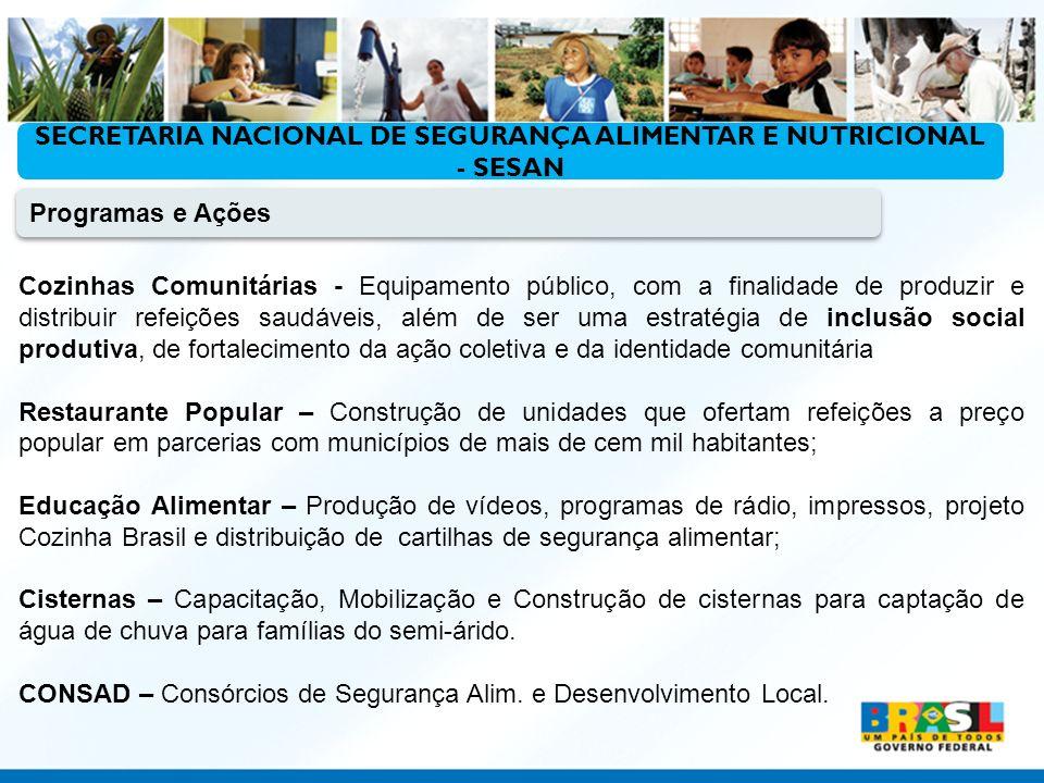 SECRETARIA NACIONAL DE SEGURANÇA ALIMENTAR E NUTRICIONAL - SESAN