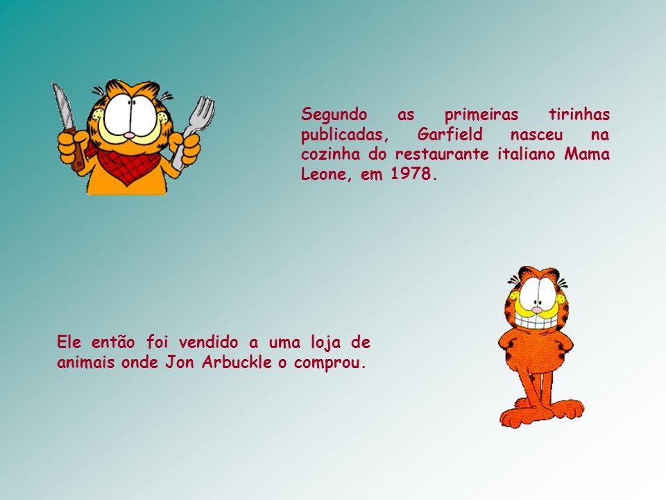 Segundo as primeiras tirinhas publicadas, Garfield nasceu na cozinha do restaurante italiano Mama Leone, em 1978.