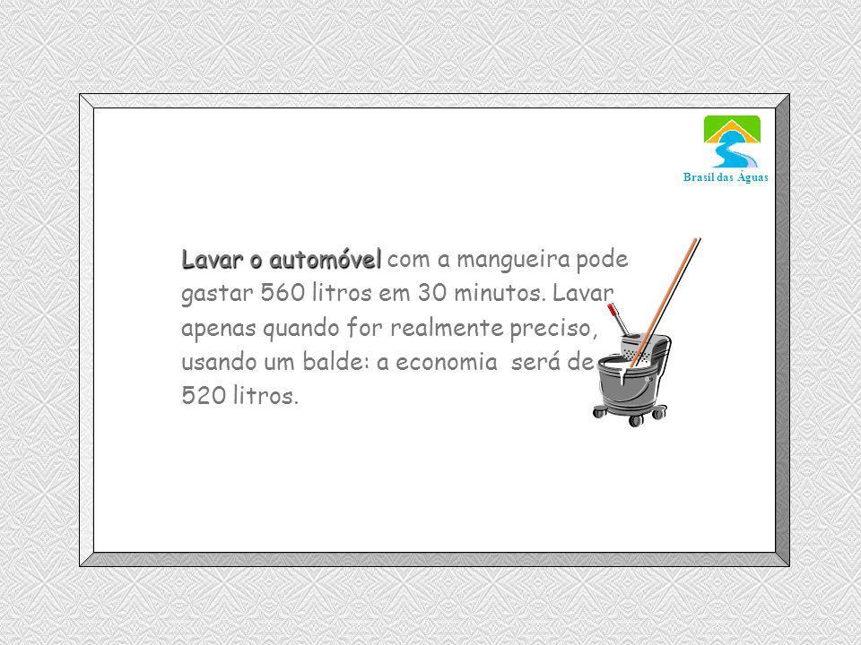 Lavar o automóvel com a mangueira pode gastar 560 litros em 30 minutos