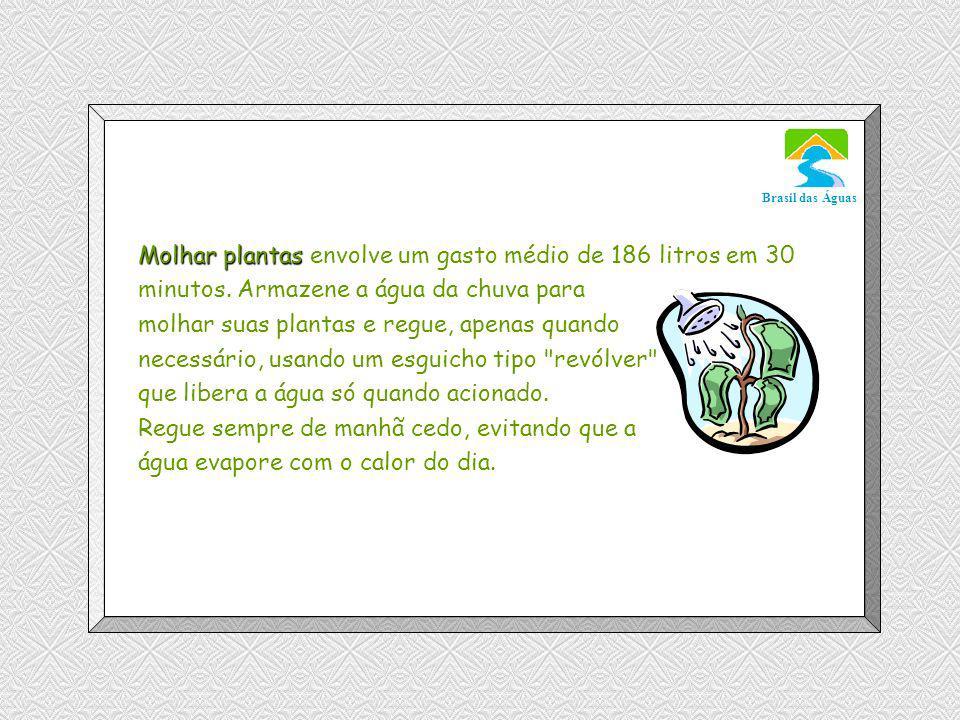 Molhar plantas envolve um gasto médio de 186 litros em 30 minutos