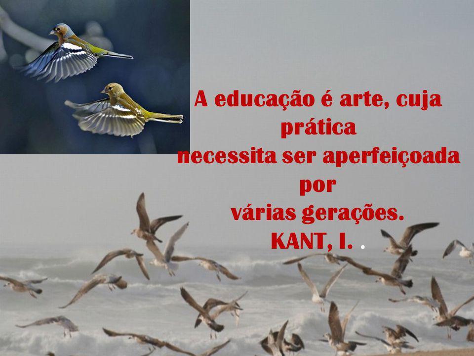 A educação é arte, cuja prática necessita ser aperfeiçoada por