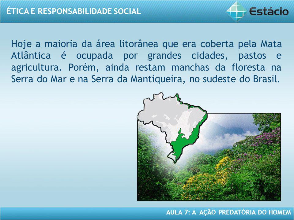 Hoje a maioria da área litorânea que era coberta pela Mata Atlântica é ocupada por grandes cidades, pastos e agricultura.