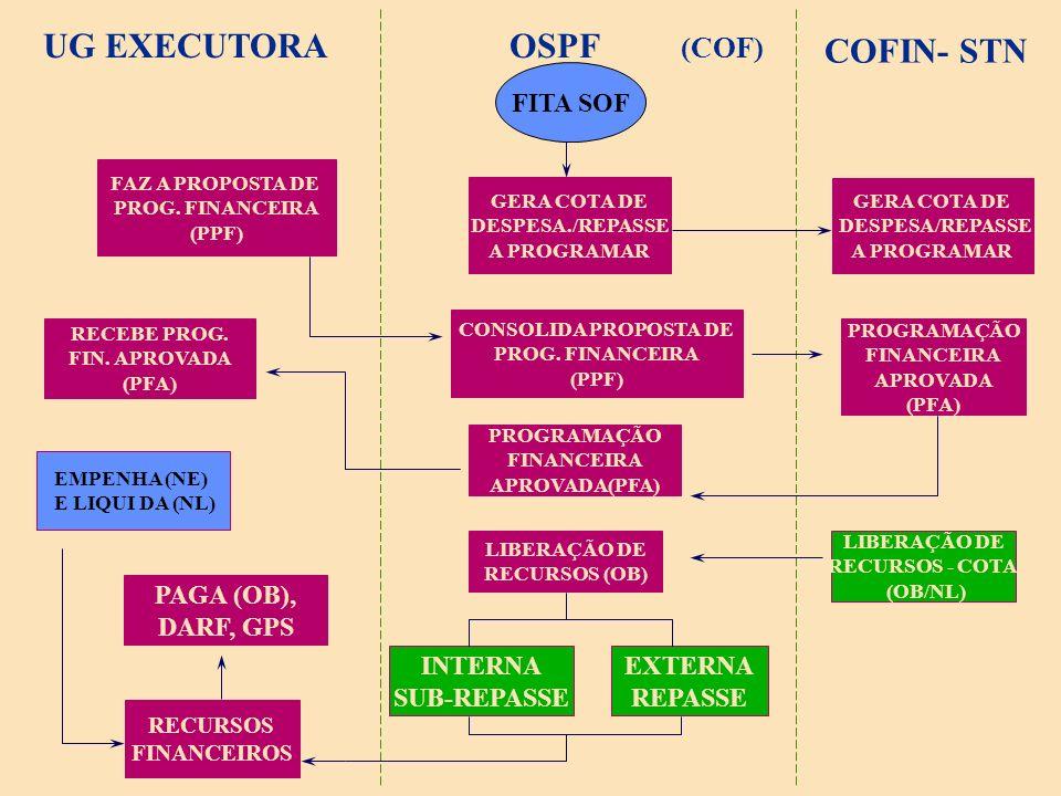 UG EXECUTORA OSPF COFIN- STN (COF) FITA SOF PAGA (OB), DARF, GPS