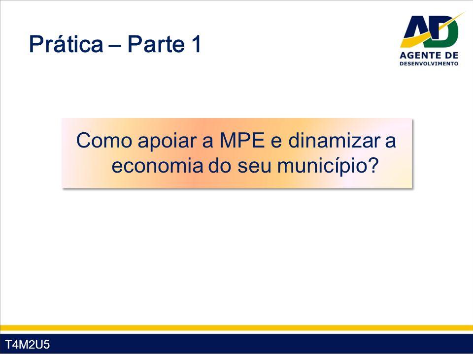 Como apoiar a MPE e dinamizar a economia do seu município