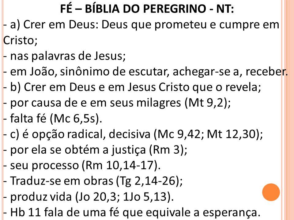 FÉ – BÍBLIA DO PEREGRINO - NT: