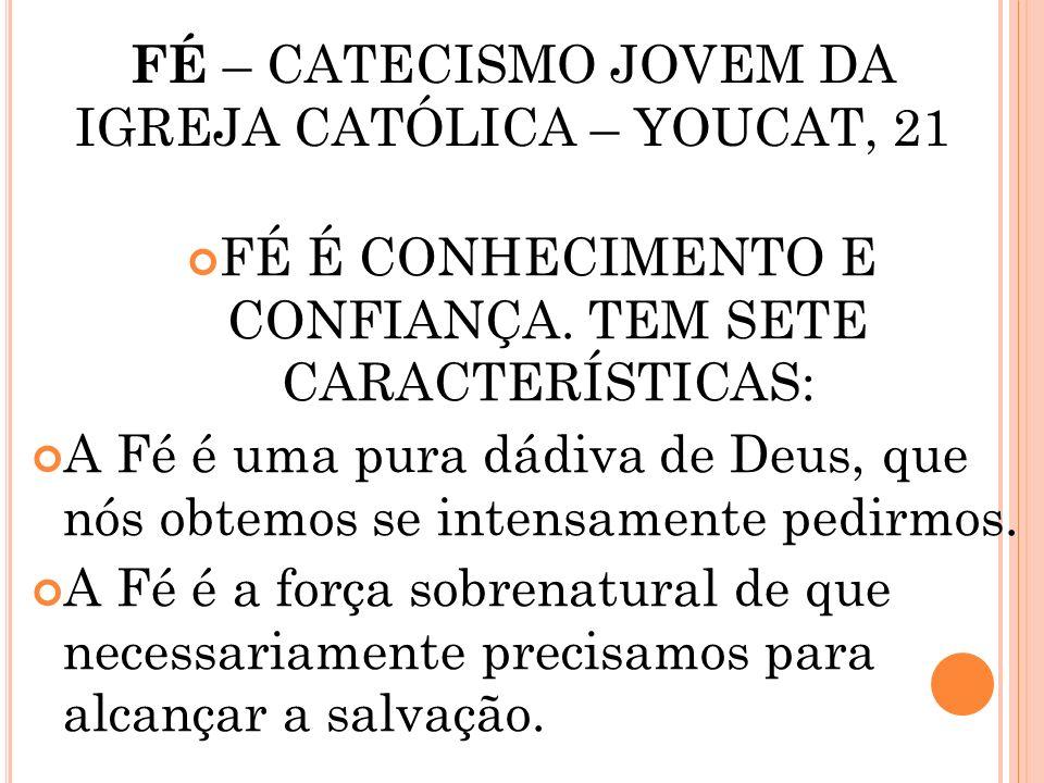 FÉ – CATECISMO JOVEM DA IGREJA CATÓLICA – YOUCAT, 21
