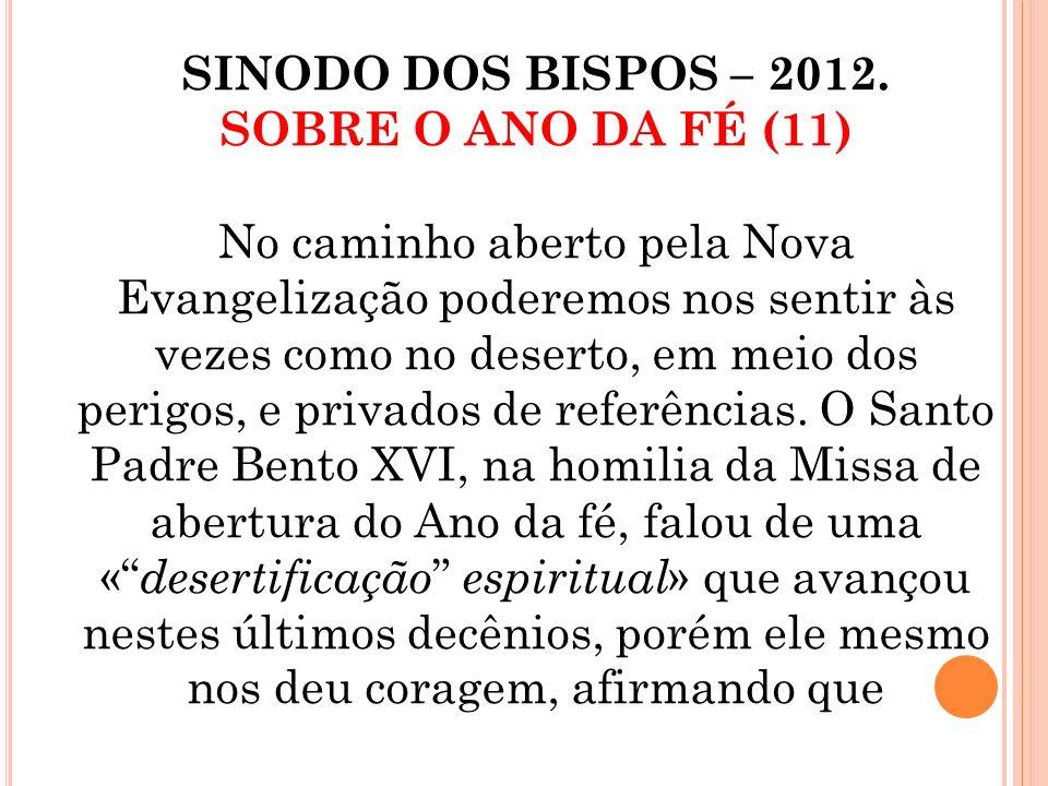 SINODO DOS BISPOS – 2012. SOBRE O ANO DA FÉ (11)