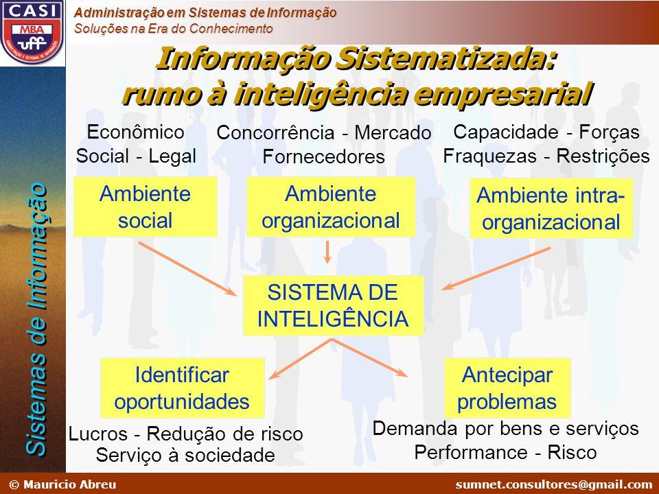 Informação Sistematizada: rumo à inteligência empresarial