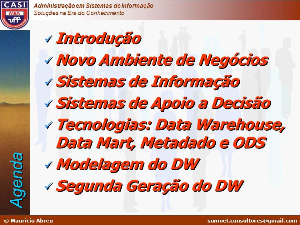 Agenda Introdução Novo Ambiente de Negócios Sistemas de Informação
