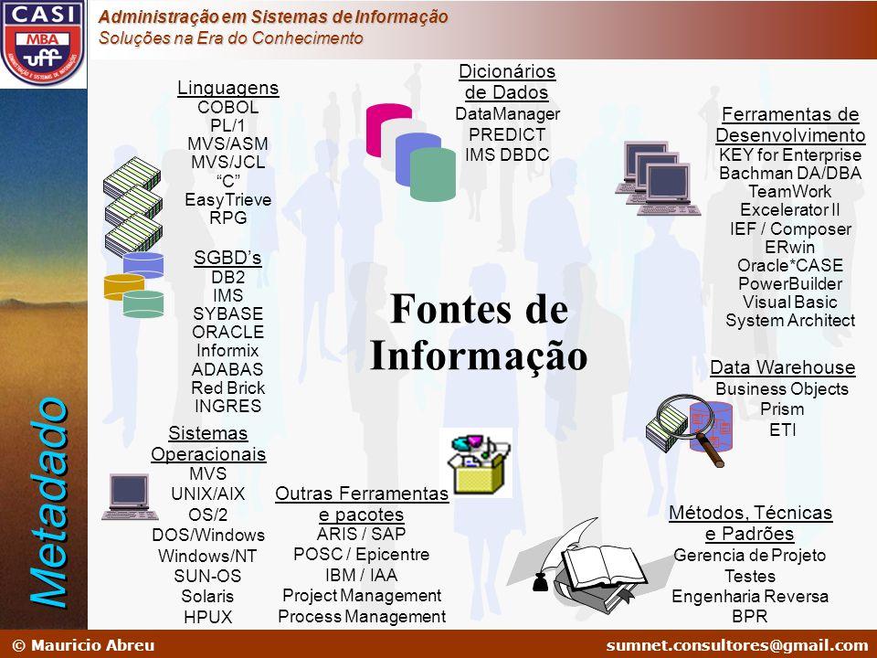 Metadado Fontes de Informação Dicionários de Dados Linguagens