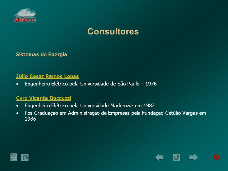 Consultores Sistemas de Energia Júlio César Ramos Lopes