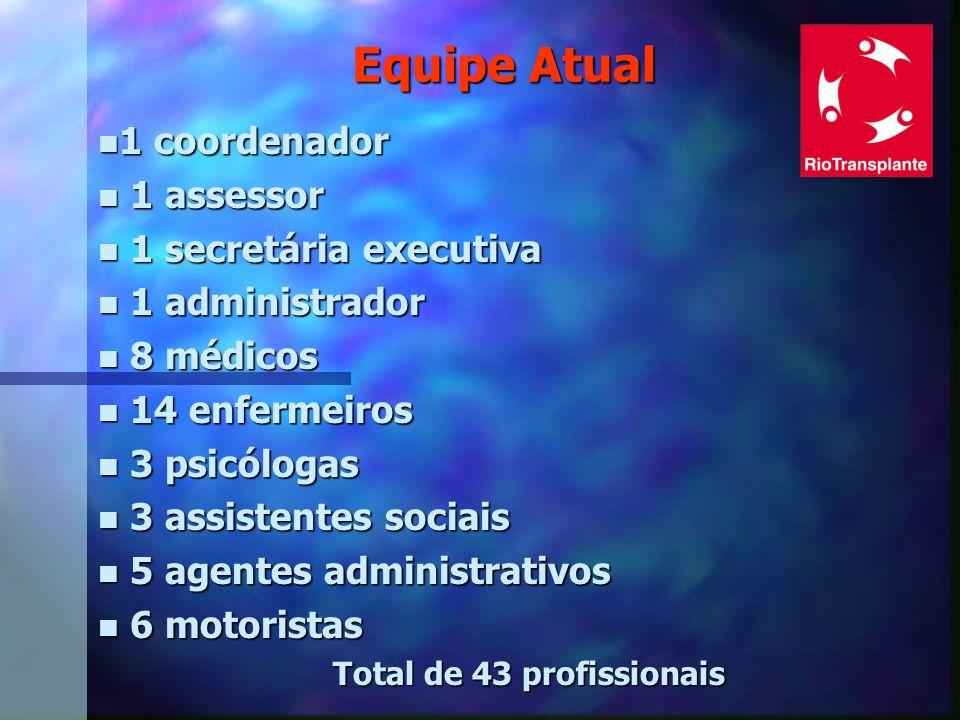 Total de 43 profissionais
