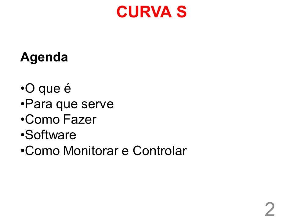 CURVA S Agenda O que é Para que serve Como Fazer Software