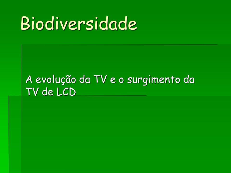 A evolução da TV e o surgimento da TV de LCD