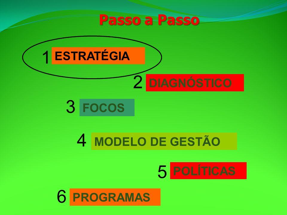 1 2 3 4 5 6 Passo a Passo ESTRATÉGIA DIAGNÓSTICO FOCOS