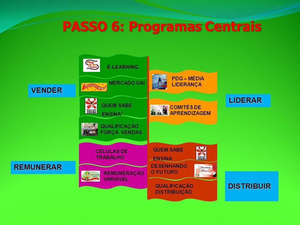 PASSO 6: Programas Centrais