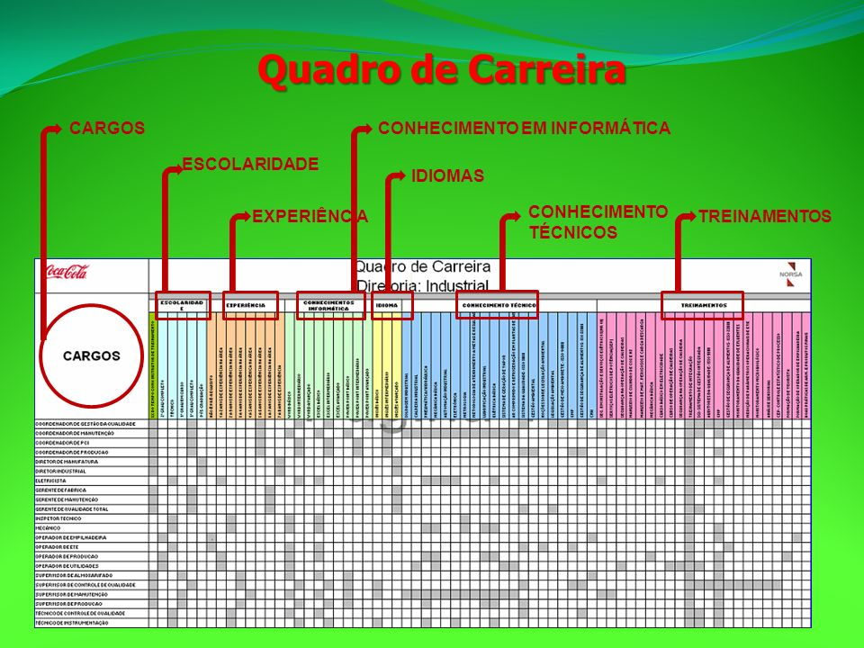 Quadro de Carreira CARGOS CONHECIMENTO EM INFORMÁTICA ESCOLARIDADE
