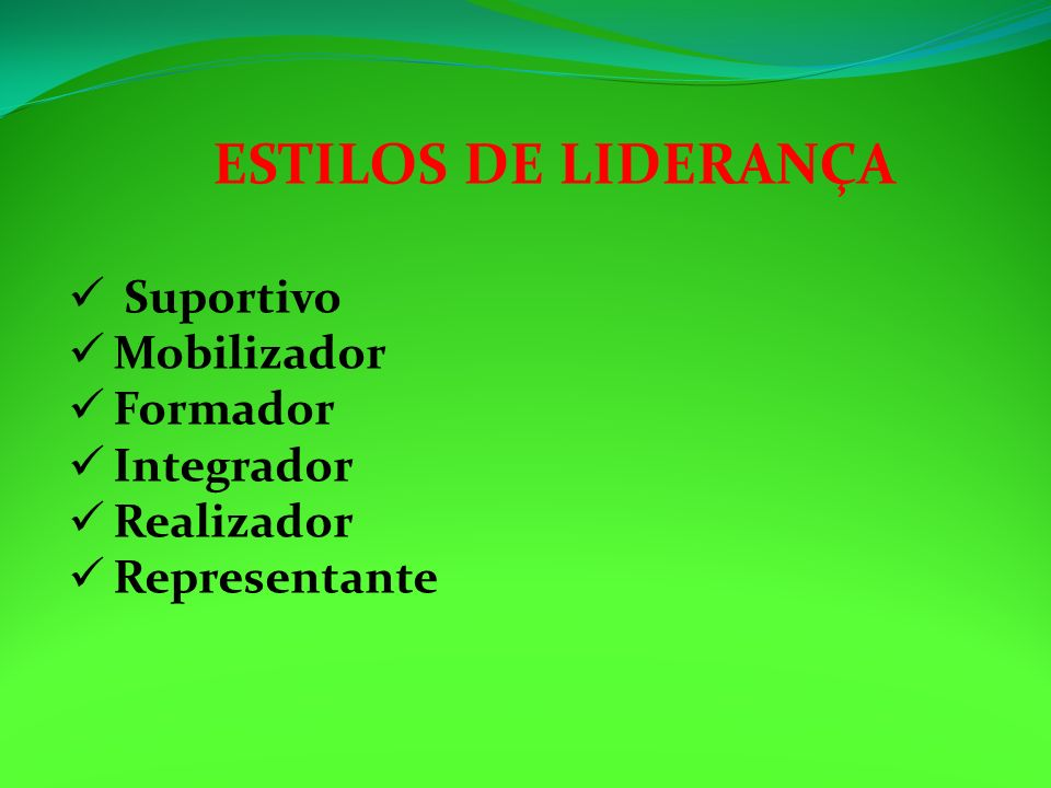 ESTILOS DE LIDERANÇA Suportivo Mobilizador Formador Integrador