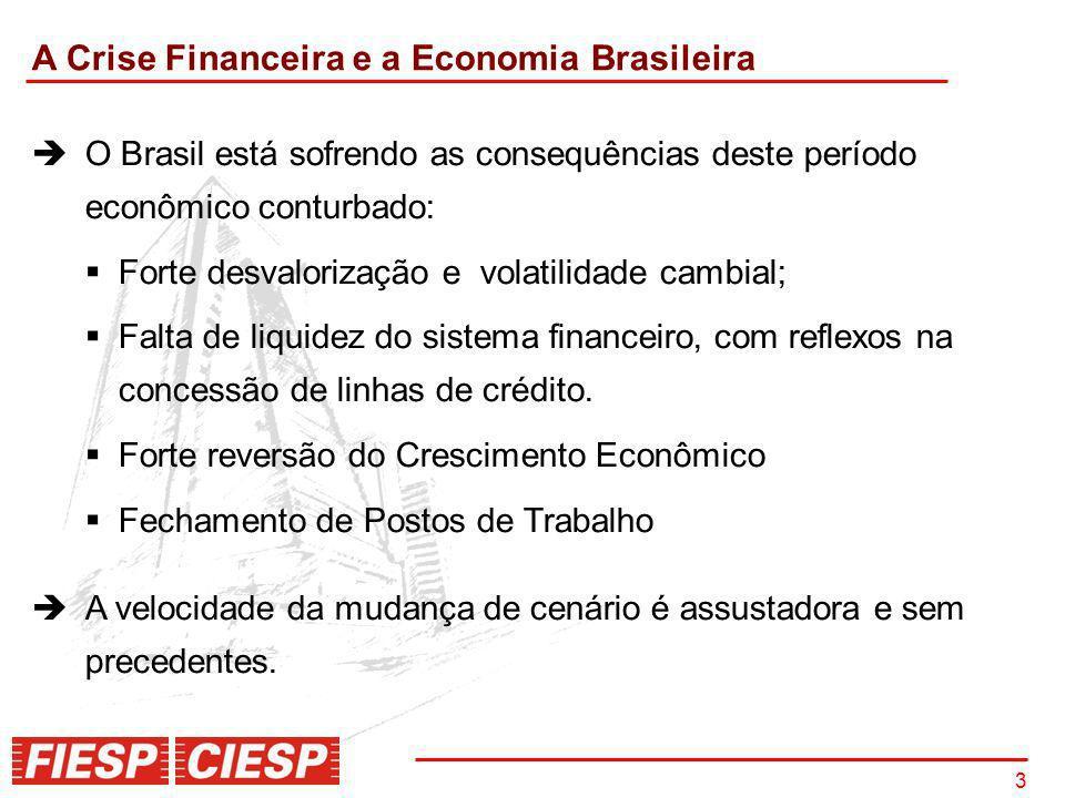 A Crise Financeira e a Economia Brasileira