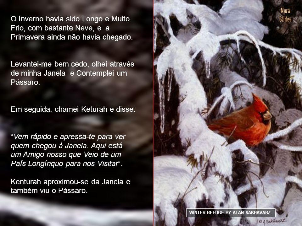 O Inverno havia sido Longo e Muito Frio, com bastante Neve, e a