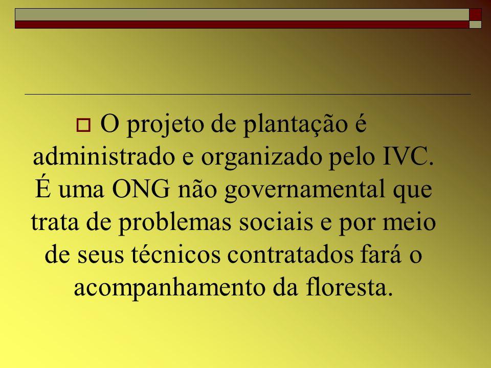 O projeto de plantação é administrado e organizado pelo IVC