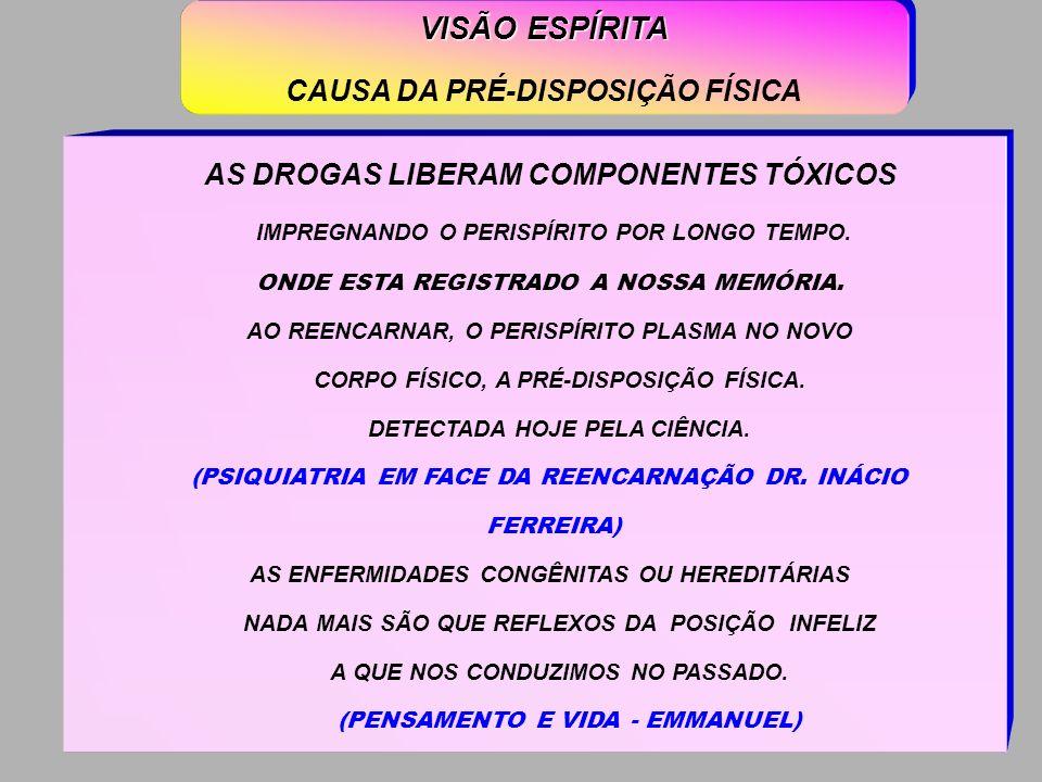 VISÃO ESPÍRITA CAUSA DA PRÉ-DISPOSIÇÃO FÍSICA