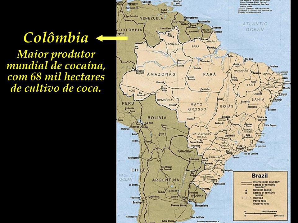 Maior produtor mundial de cocaína,